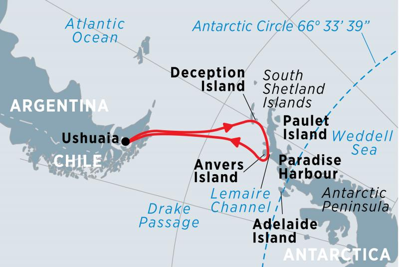 Antarctic-Whale-Journey